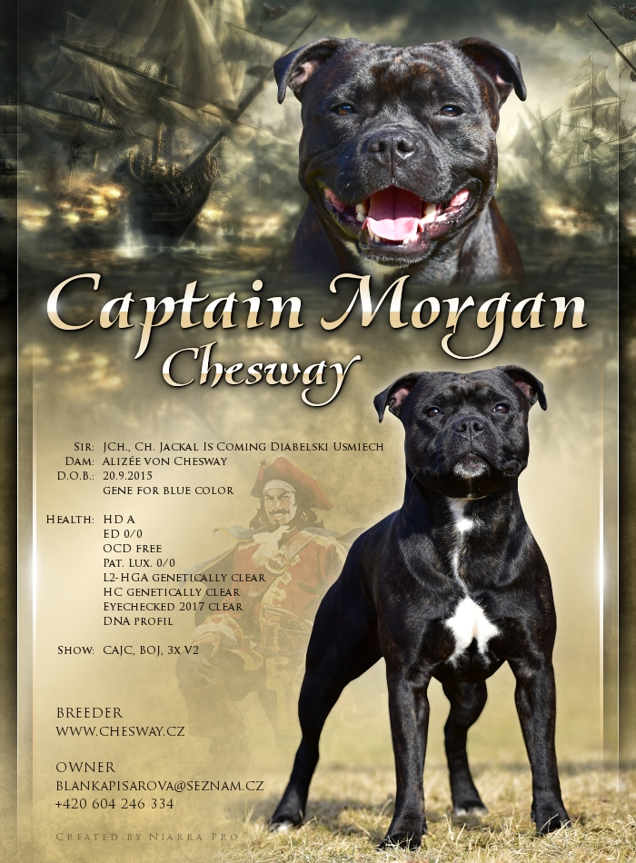 20170422 captain morgan chesway