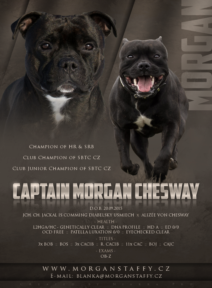 2018 02 25 captain morgan chesway