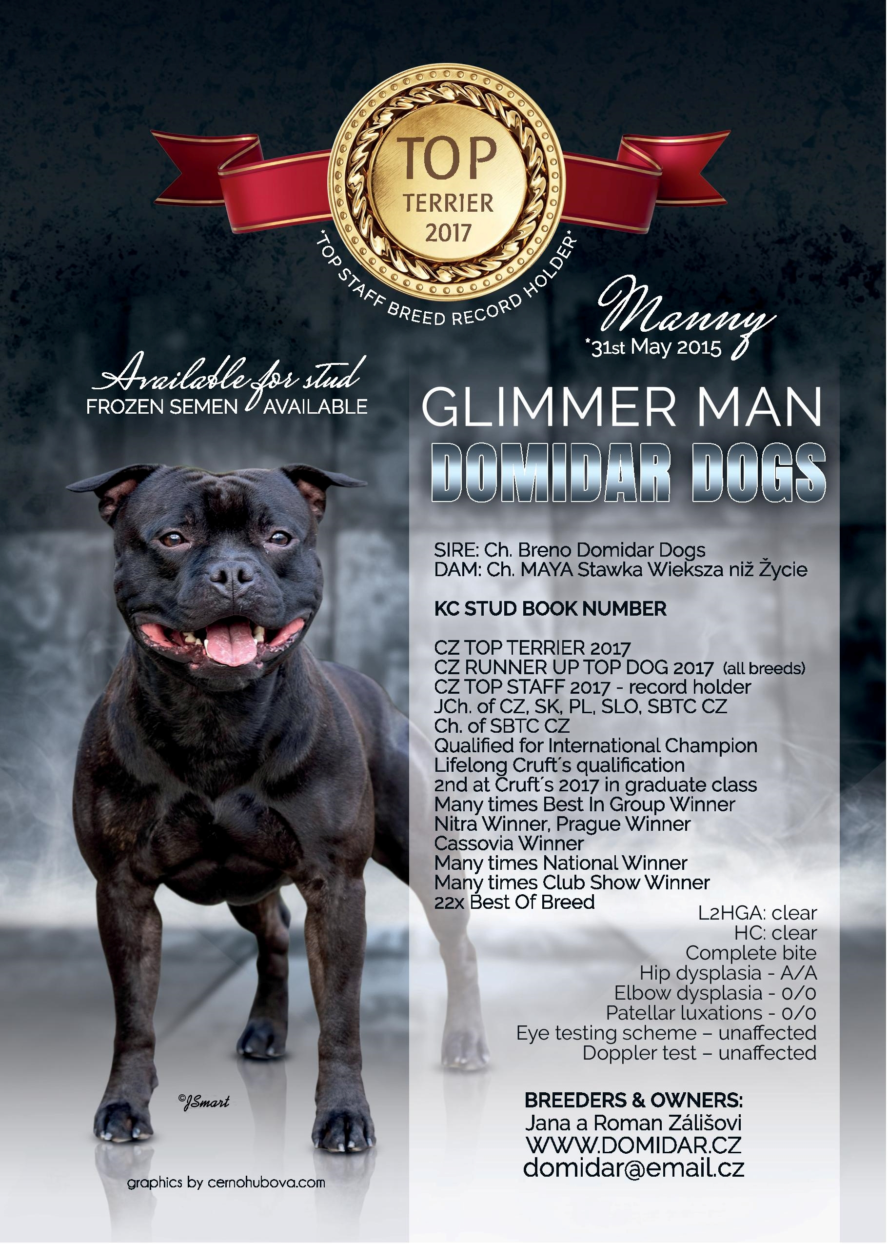Glimmer man domidar dogs 2018 01 29